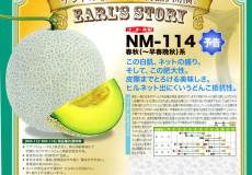 ナント種苗株式会社 / メロン / ナント交配 / NM-114