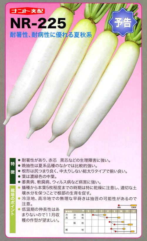 ナント種苗株式会社 / 大根 / ナント交配 / NR-225