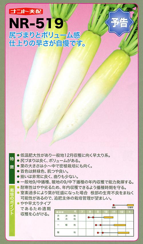 ナント種苗株式会社 / 大根 / ナント交配 / NR-519