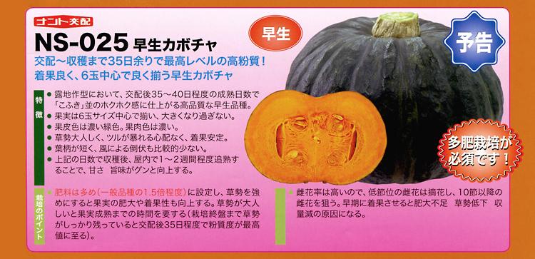ナント種苗株式会社 / カボチャ / ナント交配 / NS-025 早生カボチャ