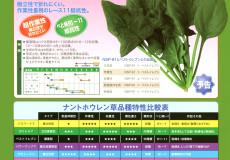 ナント種苗株式会社 / ほうれん草 / 一代交配 / NSP-91
