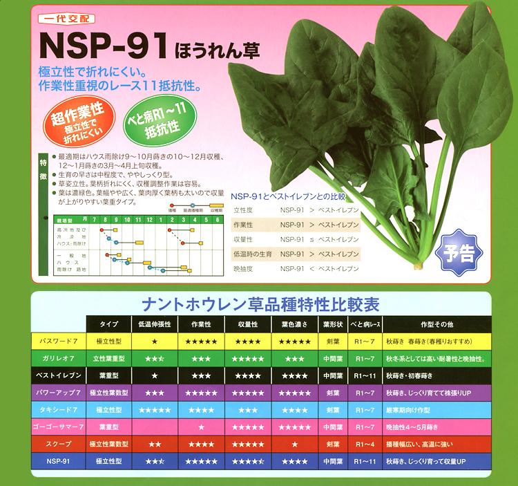 ナント種苗株式会社 / ホウレンソウ / 一代交配 / NSP-91