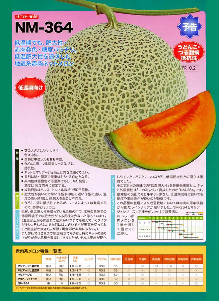 ナント種苗株式会社 / メロン / ナント交配 / NM-364