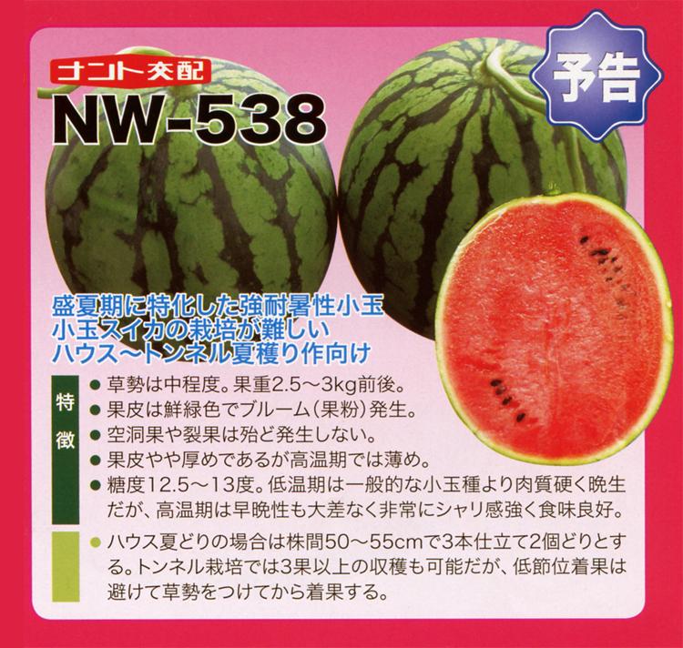 ナント種苗株式会社 / スイカ / ナント交配 / NW-538