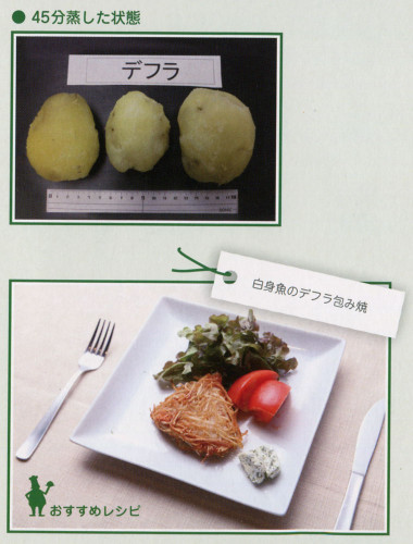 デフラ レシピ