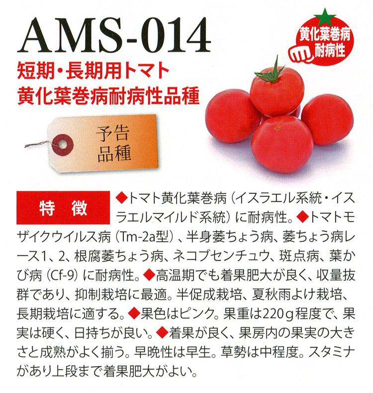 AMS-014