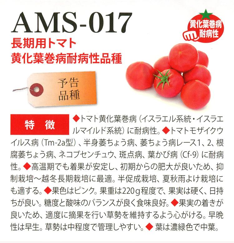 AMS-017