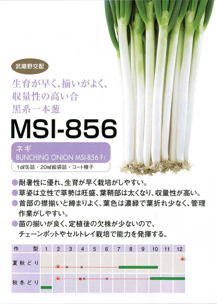 MSI-856