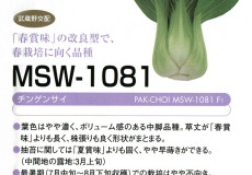 MSW-1081