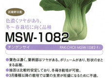 MSW-1082