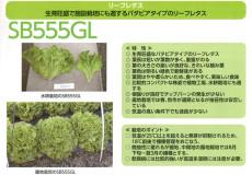 SB555GL
