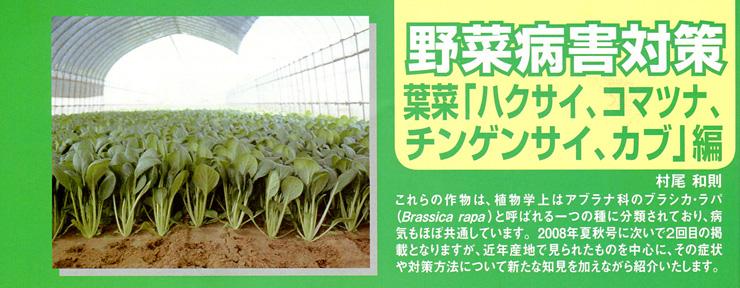 野菜病害対策 葉菜「ハクサイ、コマツナ、チンゲンサイ、カブ」編