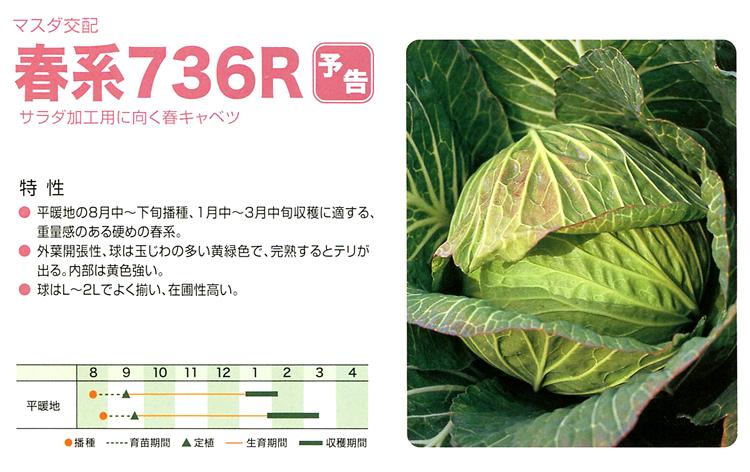 春系736R