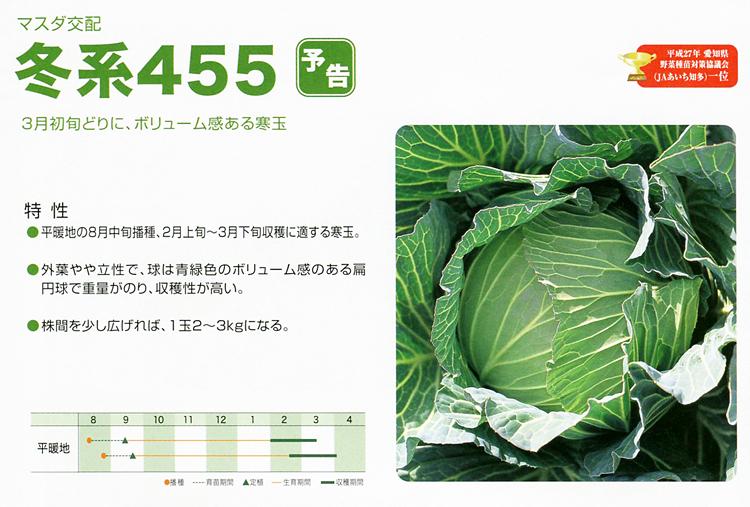 冬系455