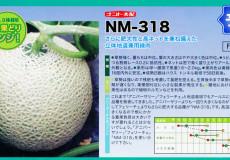 nanto-yokoku_04