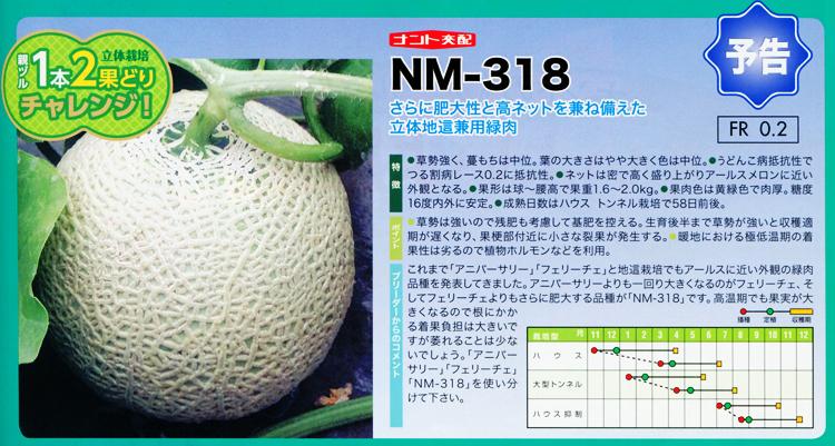 NM-318
