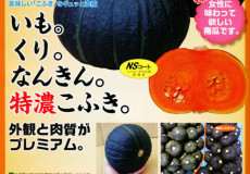nanto-yokoku_10