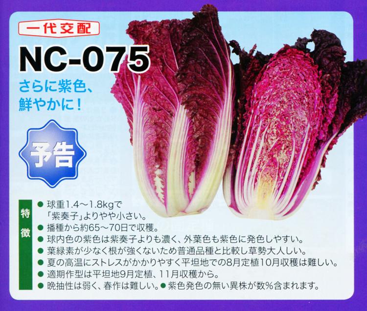 NC-075
