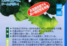 nanto-yokoku_17