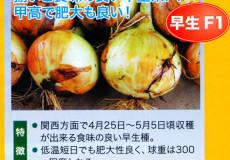 nanto-yokoku_19