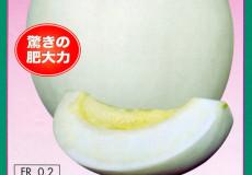ナント種苗株式会社 / メロン / ナント交配 / グランシャローム