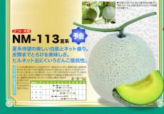 ナント種苗株式会社 / メロン / ナント交配 / NM-113