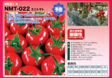 ナント種苗株式会社 / トマト / ナント交配 / NMT-022 ミニトマト