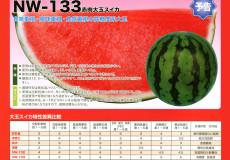 ナント種苗株式会社 / スイカ / ナント交配 / NW-133