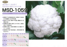 MSD-1059
